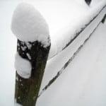 blizzard8b