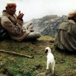 Waiting With the Shepherds